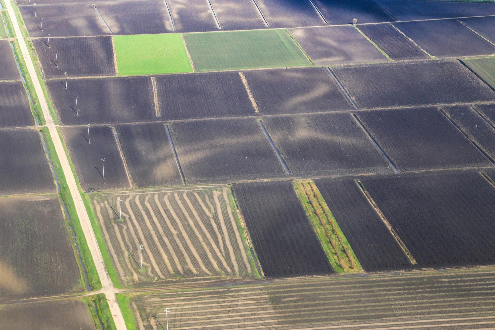 Agricoltura_6